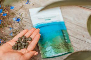 őszi immunerősítés természetes gyógymódok növényi termékek Impulzív Magazin