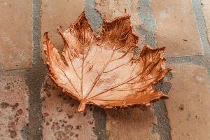 őszi tálka csináld magad Impulzív Magazin