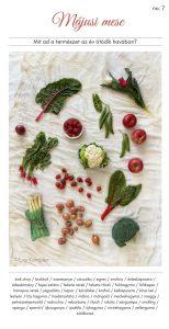 szezonális zöldségek Impulzív Magazin